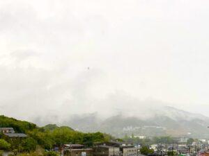 おはようございます昨日、今日と淡路島は雨️が降っており、寒いくらいです。昨日は、近所…