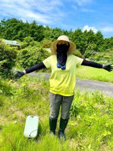 今日は、草刈りをした後、 近くのブルーベリーヒル淡路さんに寄り、ブルーベリー購入とジェラ