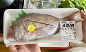 今日のうちの晩御飯淡路島 岩屋港の真鯛を購入。このサイズで、ワンコインとは驚きです…
