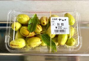 淡路島、初体験シリーズです漢方薬のナツメ、おやつ代わりに、生でかじって食べられるようです…