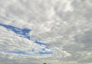 朝は雲が多かったですが、綺麗に晴れ渡った淡路島でした風も少しあり、海の水面がキラキラと綺…
