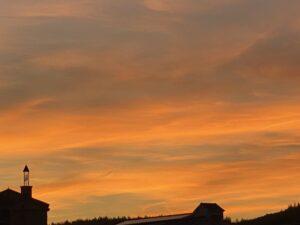 今日も晴天☀️の淡路島でした❣️ 夕方から雲☁️が少し出てきて、夕焼け雲が真っ赤に染まりました‼